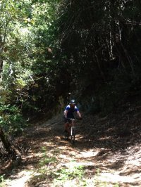 Radfahren in den Bergen